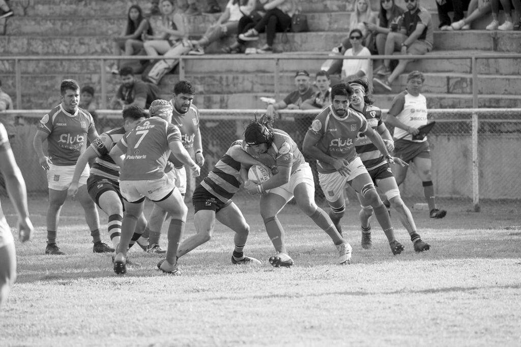 Rugby: persevera y triunfarás